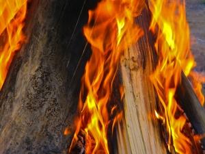Fire-1-1421114-m